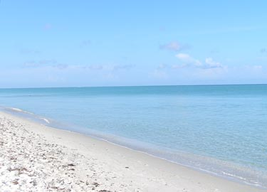 white sandy beaches of Captiva Florida