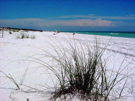 Henderson Beach State Park Visit Henderson Beach State
