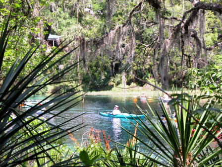 rainbow river in Dunnellon Florida