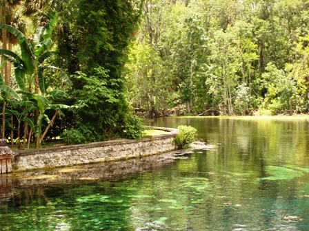 Silver River in beautiful Silver Springs Florida