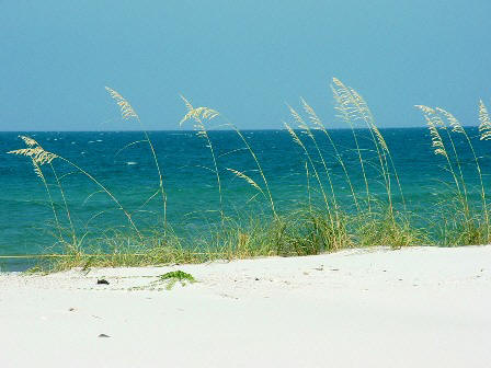 scenic view from St George Island State park in Florida