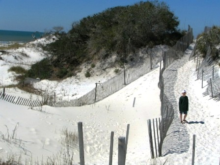 sand dunes at St Josephs penisula state park in Florida