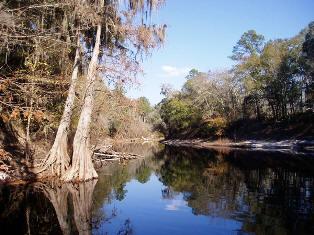 Florida Rivers Discover Florida Rivers - Florida rivers
