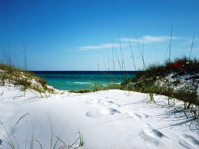 Grayton Beach Florida ocean view