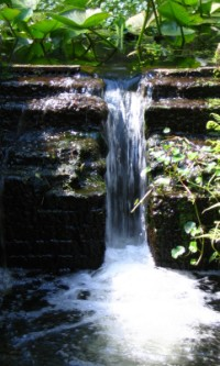 Ravine State Gardens Visit Ravine State Gardens Florida